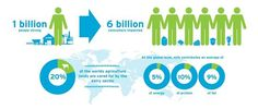 Dairy - Supporting the livelihoods of 1 billion people
