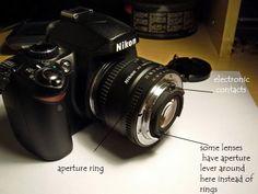 reverse-lens-macro-photography-07.jpg
