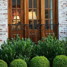 Done right, foundation plants can help your front yard become a dynamic garden space. Here are four things to consider when designing a foundation planting scheme. Boxwood Landscaping, Front House Landscaping, Farmhouse Landscaping, Backyard Landscaping, Southern Landscaping, Inexpensive Landscaping, Evergreen Landscape, Small Evergreen Shrubs, Garden Shrubs