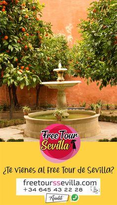 Convierte tu visita a Sevilla en una aventura repleta de emociones. Vente a disfrutar de un tour diferente en el que no sólo ves un destino, sino lo sientes!!. Te encontrarás integrado en las vidas y culturas de los pueblos que por aquí pasaron, y lo recordarás para siempre como una gran experiencia. ¿Te lo vas a perder?. Apúntate en la web o por whatsapp al +34 645 43 22 28 +info Fountain, Free, Tours, Outdoor Decor, Sevilla, Monuments, Destiny, Adventure, Water Well