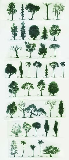 Tree painting - 1001 idées pour dessiner un arbre merveilleux avec exemples. Painting & Drawing, Drawing Trees, Painting Trees, Tree Paintings, Drawings Of Trees, Watercolor Trees, Nature Drawing, Watercolour, Tree Sketches