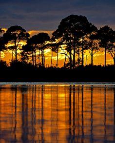 Port St. Jo Penninsula Sunset Vertical - Flickr - Photo Sharing!