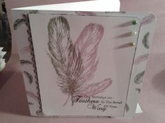 Birthday card  using sheena douglas feather stamps.