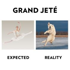 Grand Jete - how funny soooooo true