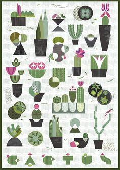 ♥ Cactus