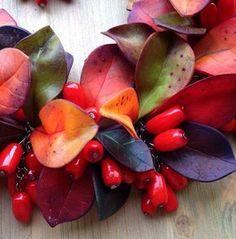 Autumn Leaves Tutorial - Polymer Clay