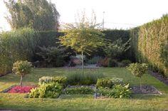 De geschikte planten kiezen voor uw tuin.