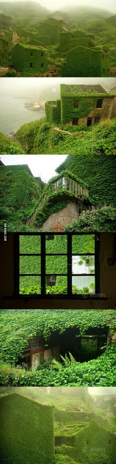 Island Reclaimed By Nature In The Most Stunning Way