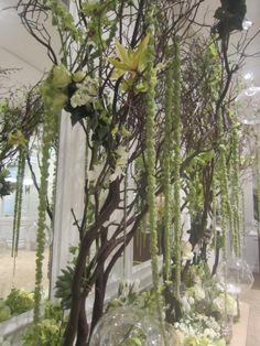 gusto ko gumawa ng fake na puno sa bintana na para ka lng nasa labas ganit ang mga etc na halaman   Wedding centerpieces the next day. Manzanita branches with orchids, succulents, hanging amaranths, moss, roses, and candles in glass orbs. Greens and whites. They were beautiful.