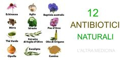 12 antibiotici naturali https://www.facebook.com/pages/Laltra-medicina/172480396117917?ref=hl