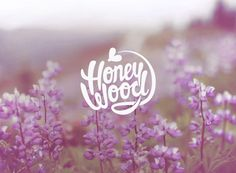 Honey Wood by Fox In Sox