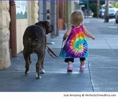 Walking the dog with kid – Two best friends taking a stroll down the street.   Perfectly Timed Pics