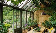 Few sun rooms and conservatories — even ritzy ones — provide ideal growing conditions. Plants need humidity, protection from excess sun, winter heating and good ventilation.
