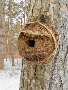 Rustic woodland Birdhouse with Vines by от bearpawrustics на Etsy, $35.00
