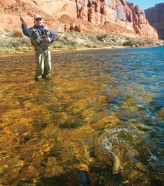 How to Catch Big Early-Summer Trout