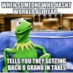 Kermit the Frog memes Funny Kermit Memes, Funny Jokes, 9gag Funny, Funny As Hell, Funny Cute, Tax Memes, Taxes Humor, Accounting Humor, Haha