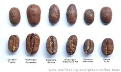 Coffee types.