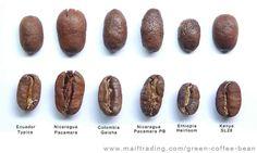 Coffee types.