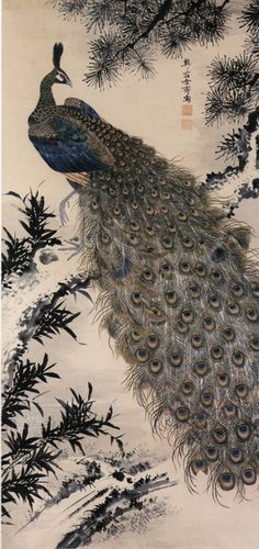Masuyama Sessai    [A painting of peacock], Edo period, 19c.     hanging scroll,ink and colors on silk