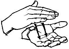 School American Sign Language