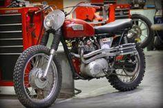 Vintage Triumph modified for the dirt Triumph Tr3, Triumph Scrambler, Triumph Motorbikes, Scrambler Motorcycle, Triumph Motorcycles, Triumph Bonneville, Brat Bike, British Motorcycles, Cool Motorcycles