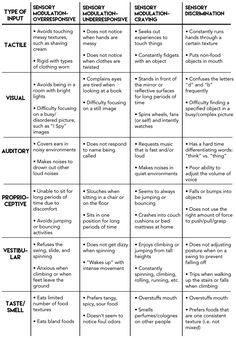 Sensory Motor, Autism Sensory, Sensory Diet, Sensory Issues, Sensory Activities, Sensory Toys, Proprioceptive Activities, Oral Motor Activities, Physical Activities