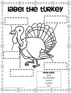 turkey printables - bubble map, turkeys - can, have, are, label the turkey