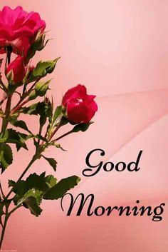 Good morning photo 2019 hd