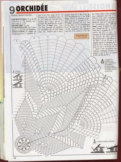 TSCA 234 - 09 Orchid俥 Expl.jpg 1,196×1,600 ピクセル