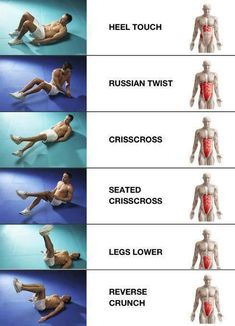 Ab exercises and the muscles they target