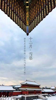 玉笔点染宫如画,江山飞絮玉万家。#故宫雪景 #snow in forbidden city