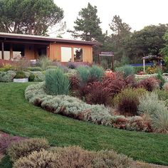 "Weave a Textural Tapestry. ""Create a sweeping swath of ornamental grasses and groundcovers for a low-maintenance slope solution. Most need trimming only once per year so you can almost literally plant them and forget them. They're also great for low-water-use landscapes."" http://www.bhg.com/gardening/landscaping-projects/landscape-basics/slope-solutions/"