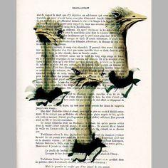 $12  3 ostrich - ORIGINAL ARTWORK  Mixed Media, Hand Painted on 1920 famous Parisien Magazine 'La Petit Illustration' by Coco De Paris