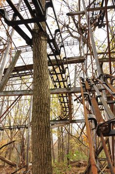 Wait. What? A Creative blog!: The Abandoned Amusement Park