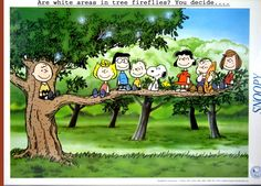 Charlie Brown, Snoopy and the whole Peanut Gang. Die Peanuts, Charlie Brown And Snoopy, Peanuts Snoopy, Snoopy Party, Lucy Van Pelt, Snoopy Pictures, Snoopy Images, Snoopy Quotes, Peanuts Gang