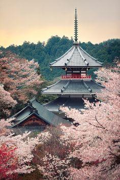 Kinpusenji pagoda ~ Mount Yoshino, Nara, Japan