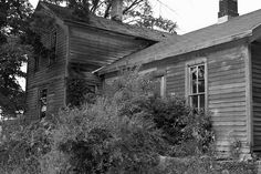 Overgrown Front Porch of Abandoned Farmhouse in Mayville, Michigan by Jen E......waiting for Spring!!!, via Flickr