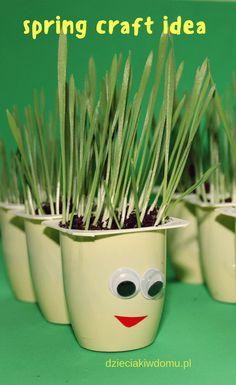 owies w danonkach - wiosenna praca dla dzieci / spring craft idea for kids  #springcrafts #kidscrafts