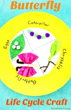 Easy Butterfly Life Cycle Craft, Spring Paper Plate Craft, life cycle of a butterfly activities, butterfly life cycle craft for kindergarten, life cycle of a butterfly project ideas, butterfly life cycle science project, butterfly life cycle preschool lesson plan, Butterfly life cycle project, Butterfly Crafts, Spring Preschool Theme, Science Activity, Preschool Science, Kindergarten Science #Science #crafts #springcrafts #butterflyactivities #butterflycrafts