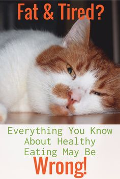 Fat and Tired? Everything You Thought You Knew About Healthy Eating May Be Wrong!