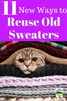 11-new-ways-to-reuse-and-recyle-old-sweaters