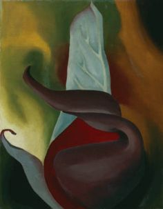 Georgia O'Keeffe / Skunk Cabbage / 1922 / oil on canvas
