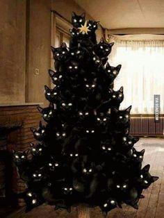 Crazy cat lady Christmas