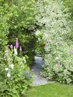 Path leading to secret room? @Pascale De Groof