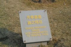 The 36 Funniest Translation Fails Of All Time. I've Never Laughed So Hard In My Life!