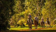Silver Falls Ranch is perfect for those seeking a unique Hawaiian riding experience on Kauai.