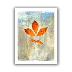 Art Wall 'Leaf I' Unwrapped Canvas by Elena Ray, 22 by 28-Inch Art Wall http://smile.amazon.com/dp/B00HHMVFNK/ref=cm_sw_r_pi_dp_ZfVKvb1YX8FNP