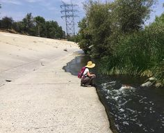 How to Restore an Urban River? Los Angeles Looks to Find Out by Jim Robbins: Yale Environment 360