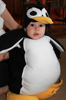 halloween 2012 baby costume penguin - Infant Penguin Halloween Costume