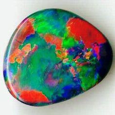 Asteria Harlequin Black Opal